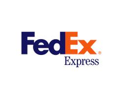Логотип обыграно буквы F и X