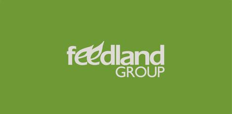 Разработка логотипа и фирменного стиля для «Feedland Group»